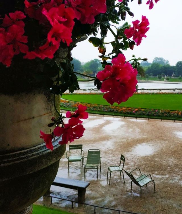 Choses vues dans le jardin du Luxembourg, à Paris - Page 9 Pluie110