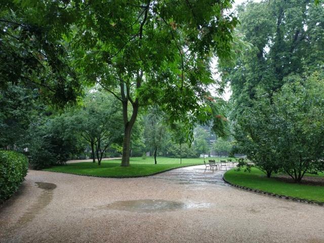 Choses vues dans le jardin du Luxembourg, à Paris - Page 9 Pluie210