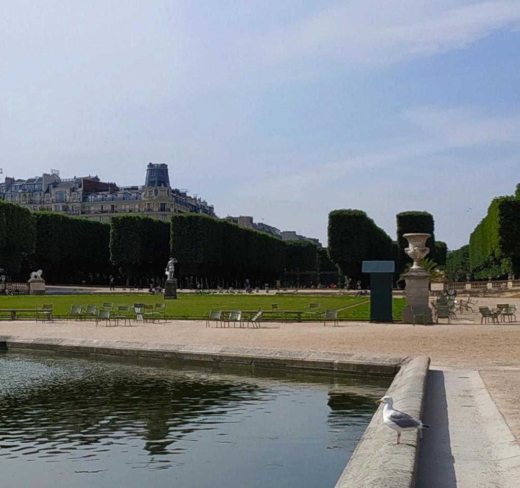 Choses vues dans le jardin du Luxembourg, à Paris - Page 8 Thumbn32
