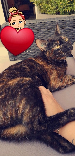 nina née le 20 mai 2017   Snapch13