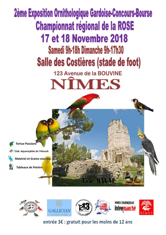concours régional région 13 à Nimes A_a_af10