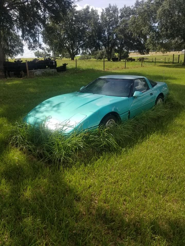 Comment une Corvette se transforme en deco de jardin 11738710