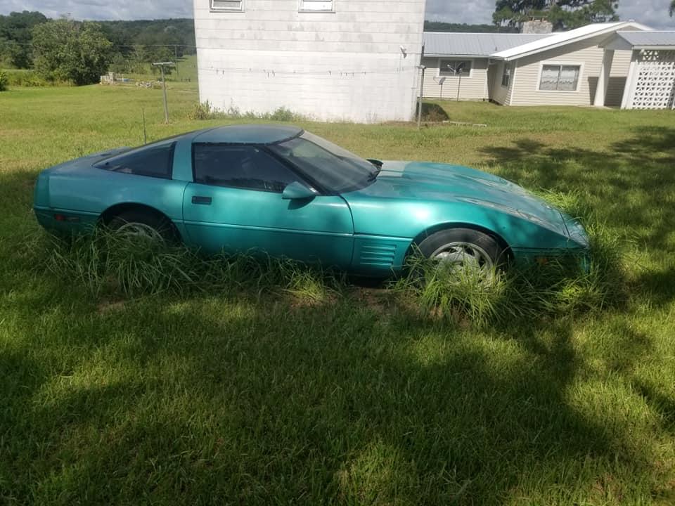 Comment une Corvette se transforme en deco de jardin 11760910
