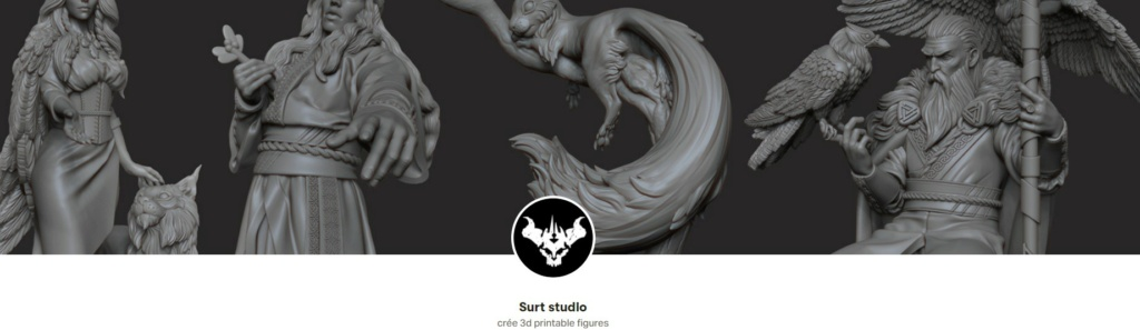 SURT Studios Captur35