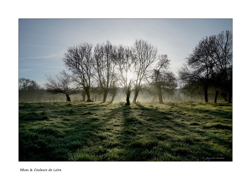 Brumes de Loire (fil) - Page 19 7r204512