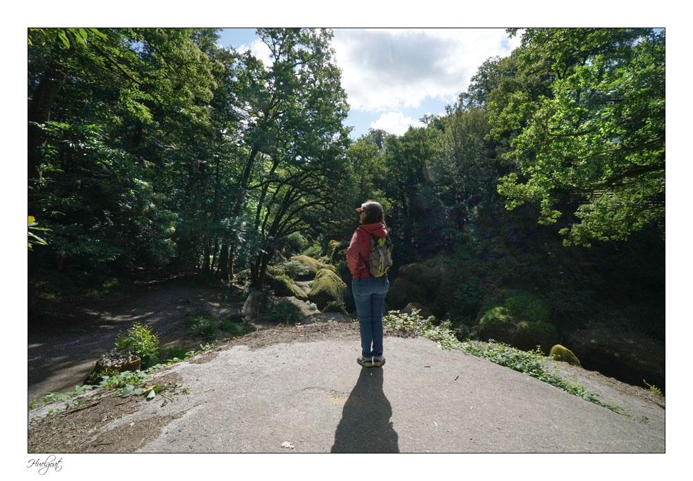 Balade dans la forêt de l'Helgouat 7r204722