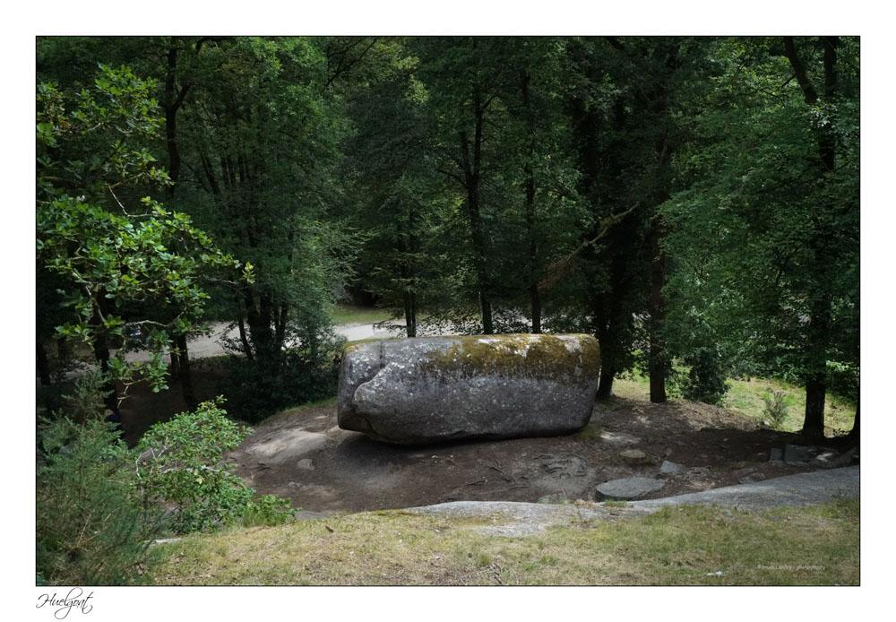 Balade dans la forêt de l'Helgouat 7r204730