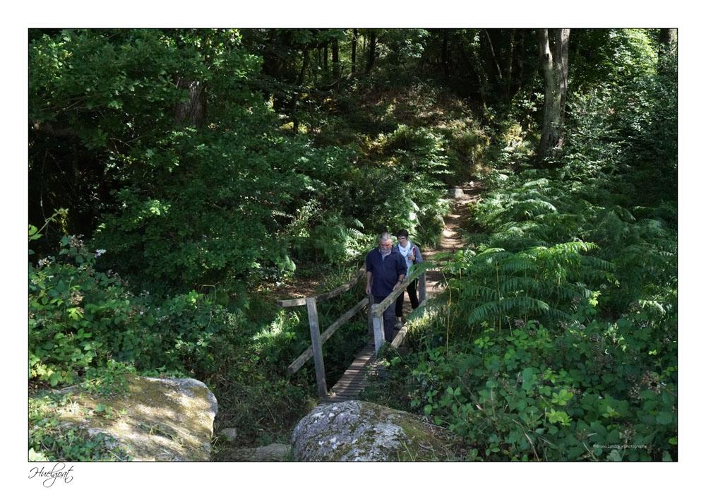 Balade dans la forêt de l'Helgouat 7r204734