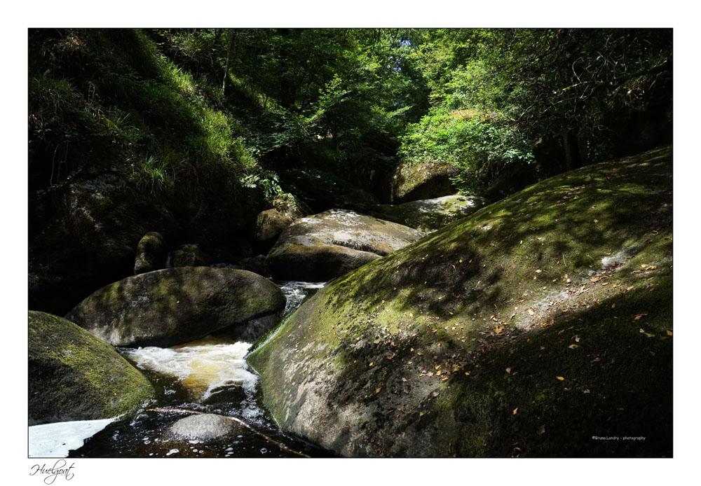 Balade dans la forêt de l'Helgouat 7r204739