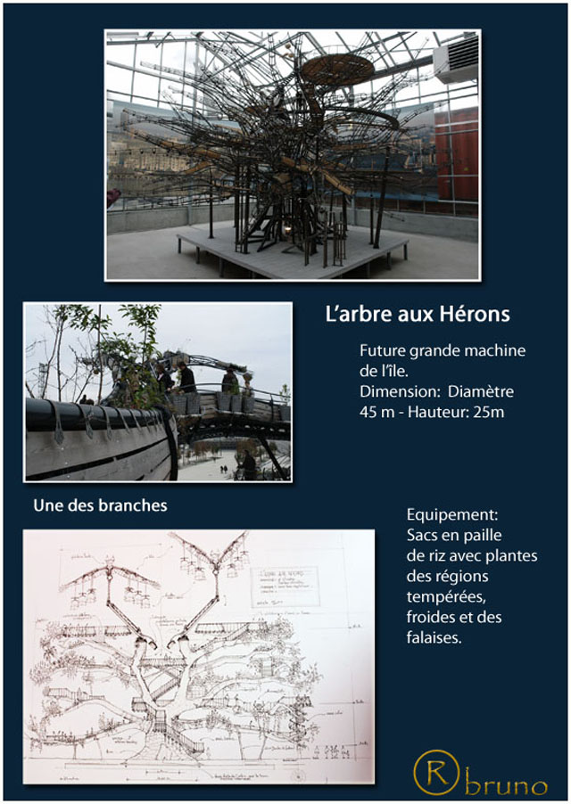Nantes Arbre_10