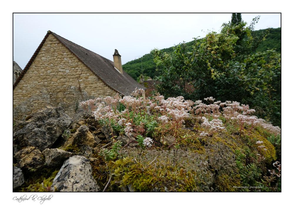 Le village de Castelnaud la chapelle et son château Dscf6314