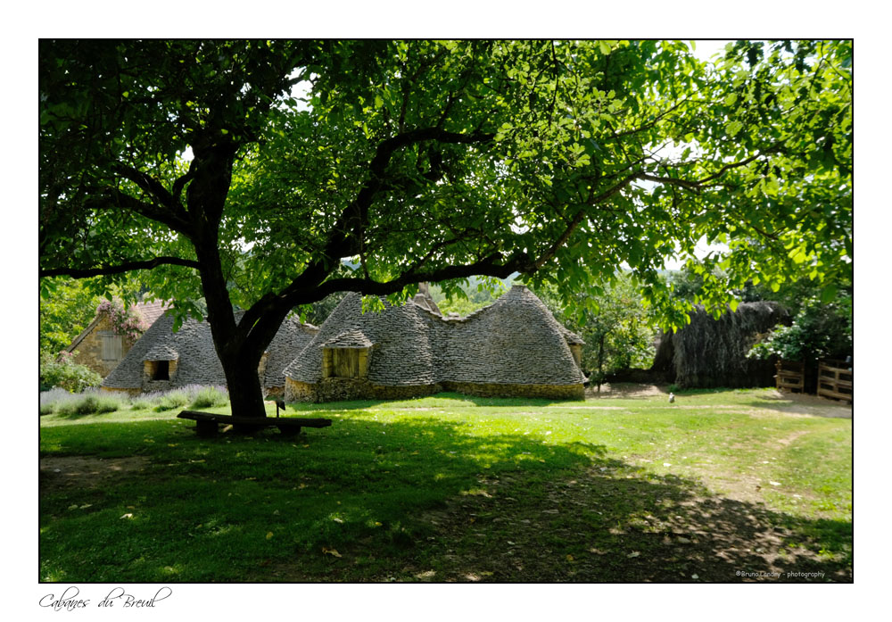 Les cabanes du Breuil Dscf6524