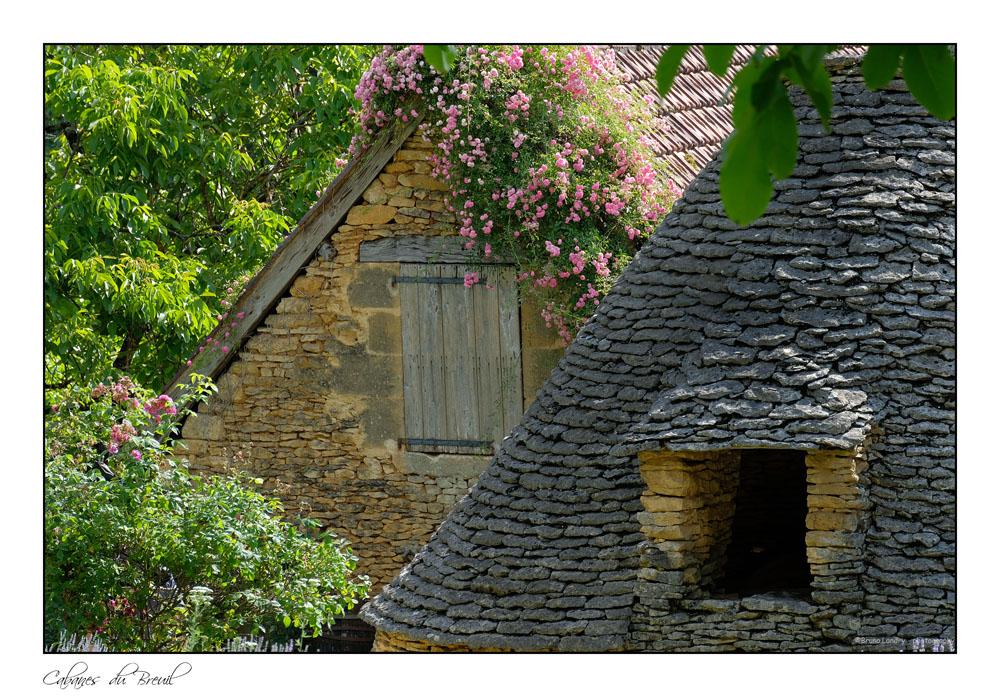 Les cabanes du Breuil Dscf7430