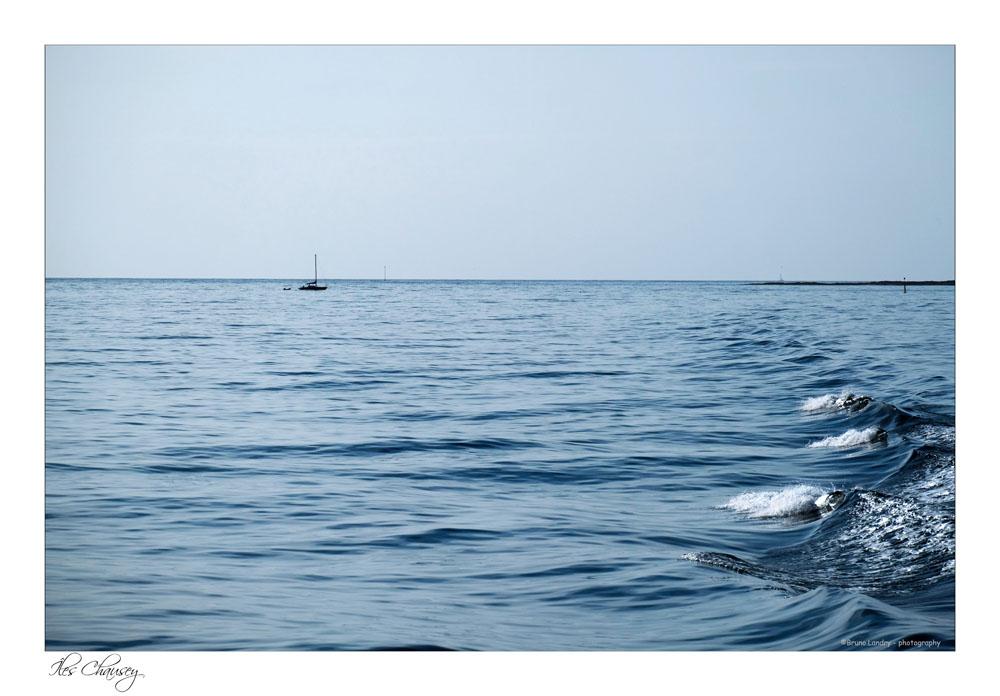 îles Chausey Dscf7613