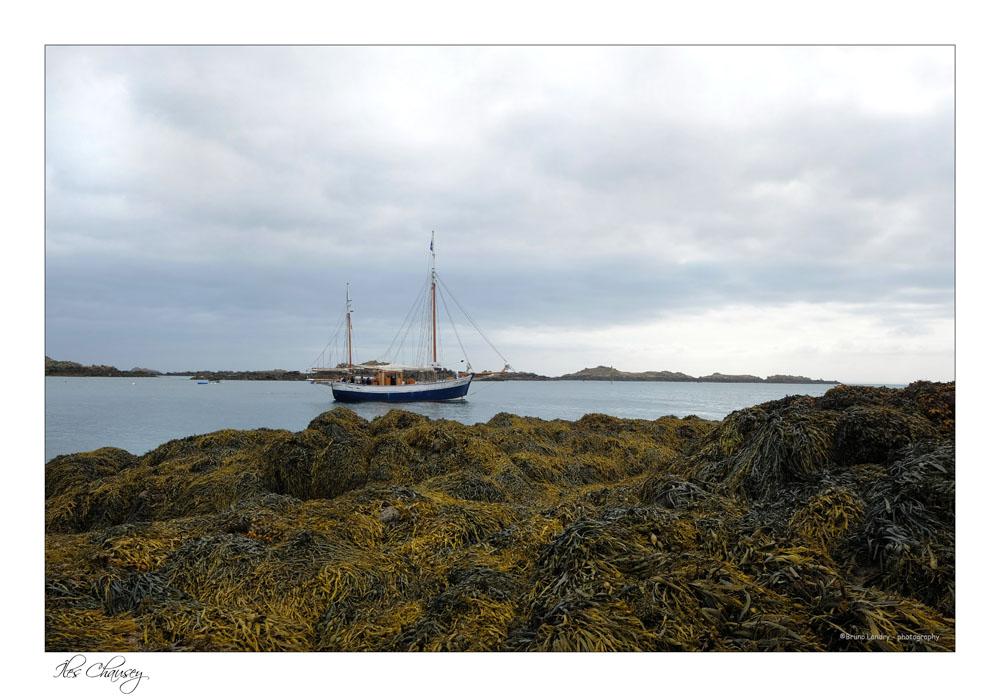 îles Chausey Dscf8112