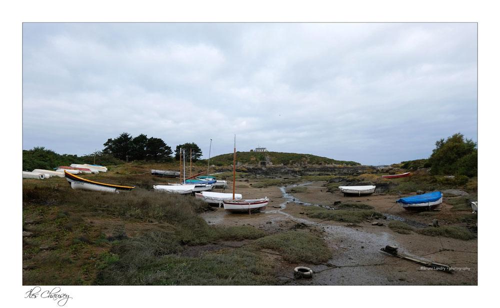 îles Chausey Dscf8115