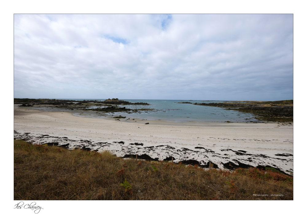 îles Chausey Dscf8116