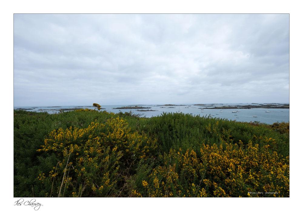 îles Chausey Dscf8121