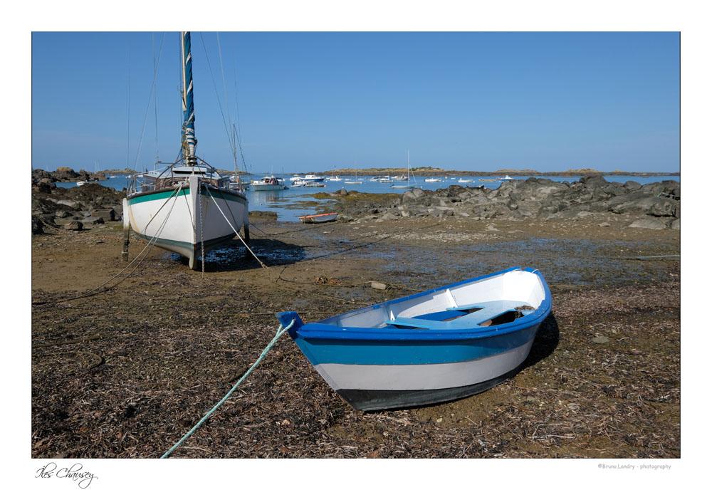 îles Chausey Dscf8210