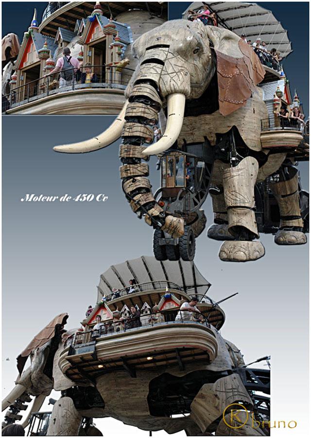 Nantes Elepha15
