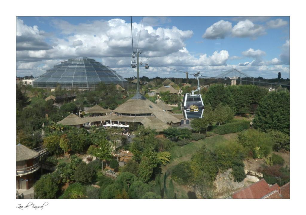 le zoo parc de Beauval Img_0710