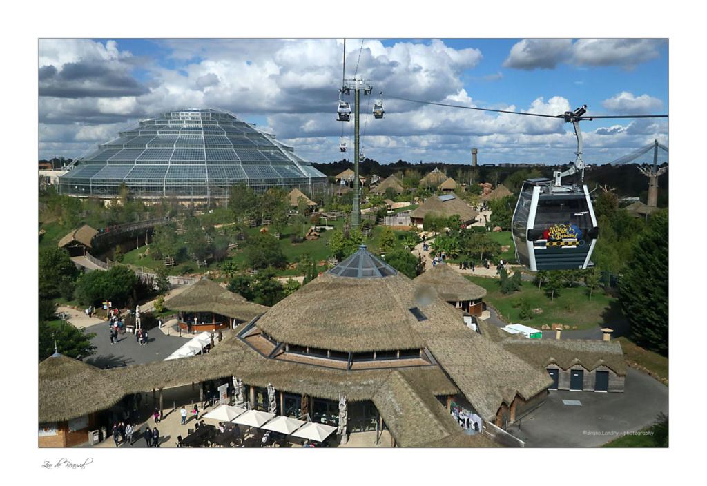 le zoo parc de Beauval Img_0711