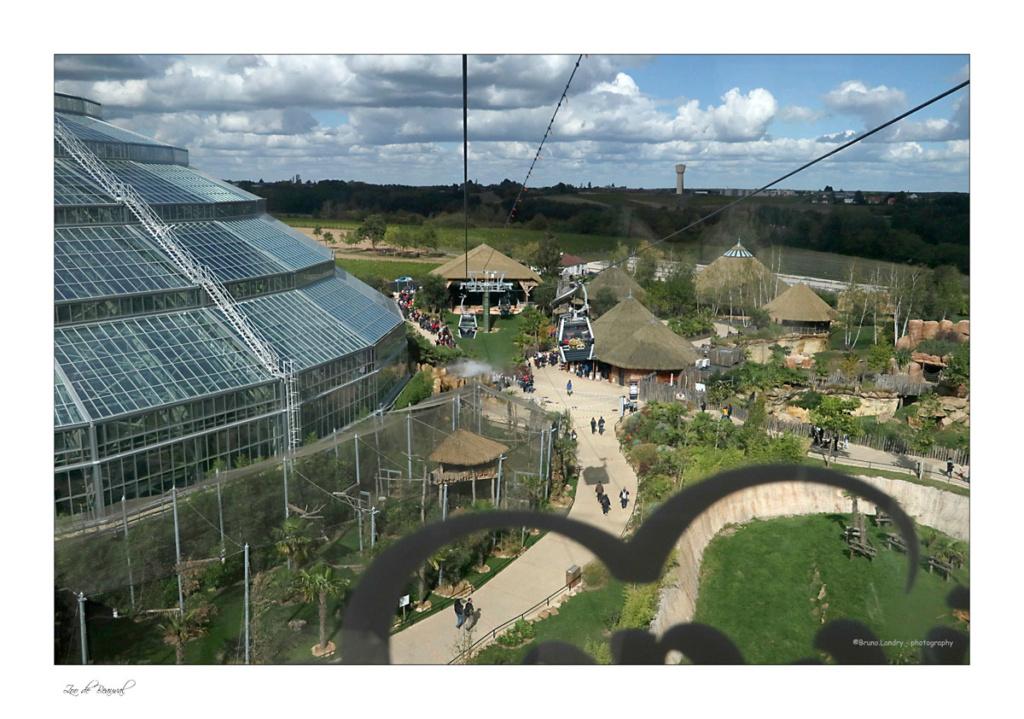 le zoo parc de Beauval Img_0712