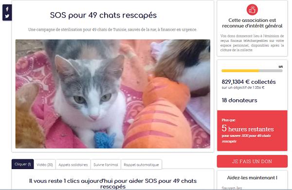 Aide CCTNA pour les animaux de HOUDA Aa_49_12