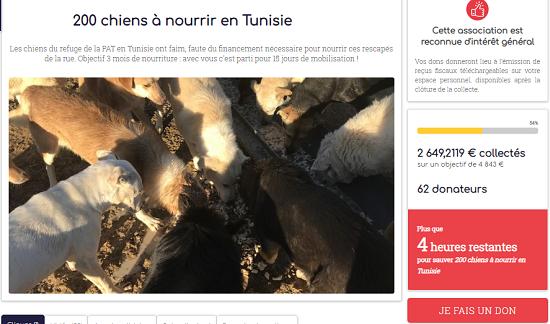 Aide CCTNA pour les animaux du refuge de la PAT Aa_5411