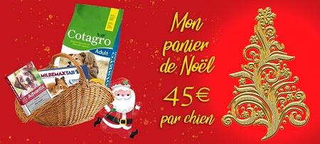 Un panier de Noël pour les chiens du refuge PAT Affich60