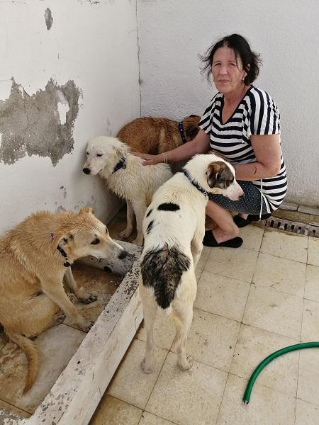 Pandémie COVID19 - Nos protégés bloqués à Tunis Alex_d10