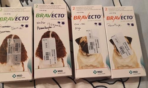"""Campagne """"antiparasitaire"""" pour les chiens du refuge PAT Bravec11"""