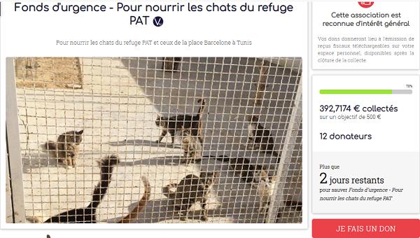 Collecte alimentaire pour les animaux du refuge PAT Collec10