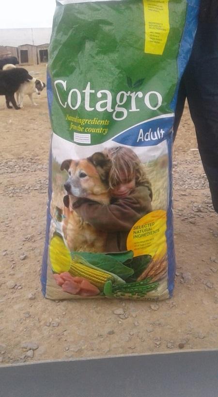 Aide CCTNA pour les animaux du refuge de la PAT Croque18