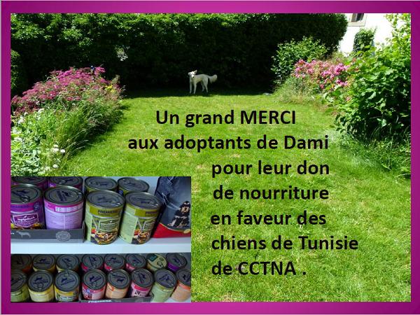 Dons du Luxembourg pour CCTNA - 2018 Dami_l10