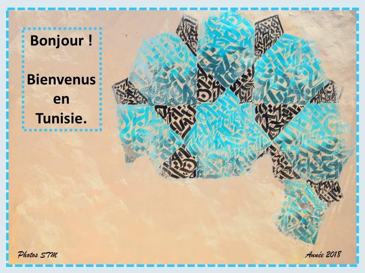 Activité des bénévoles du Luxembourg en Tunisie - année 2018 Diapos11