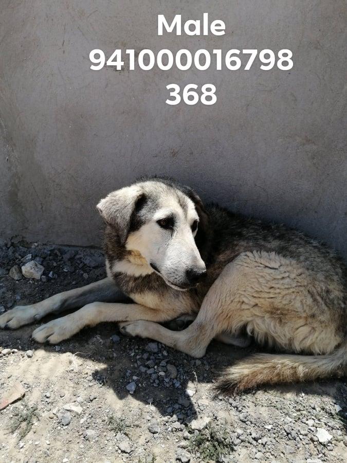 Massacre à Djerba : nuit du 21 au 22 juillet 2020 - Page 2 Djerba22