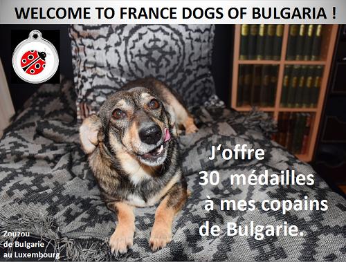 Rapatriement 30 chiens de Bulgarie du 7 & 8 décember 2018 Don_mz12