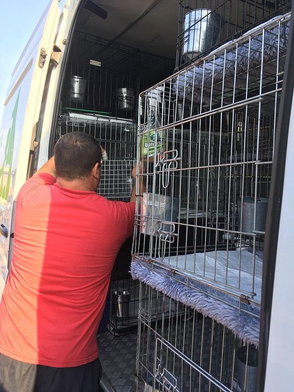Rapatriement  30 chiens de Bulgarie - 25 & 26 septembre 2018 Dzopar15