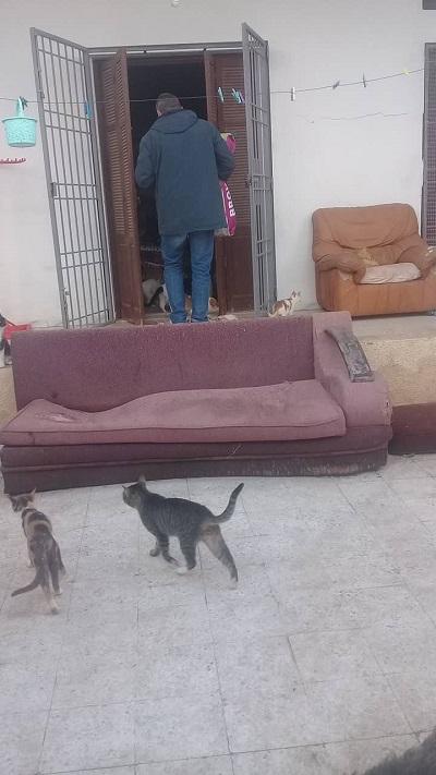 Aide CCTNA pour les animaux de HOUDA Houda_13