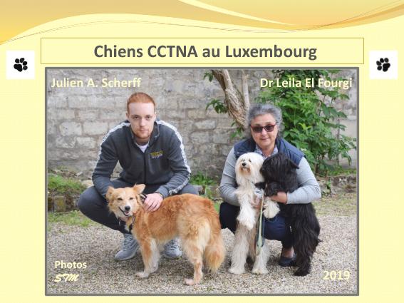 Les heureux adoptés au Luxembourg - Année 2019 Les_st11