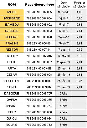 Nouvelles des chiens CCTNA actuellement en Tunisie Liste_13