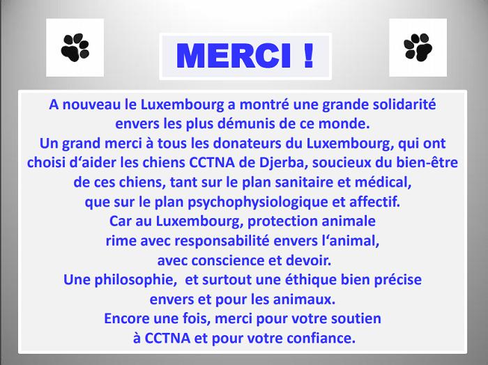 Informations concernant les chiens rescapés de Djerba Lux_me12