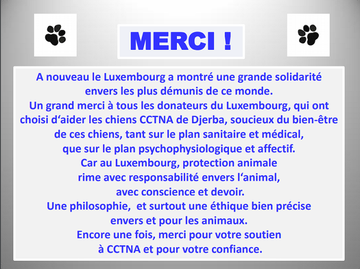 Aides du Luxembourg en faveur des chiens CCTNA de Djerba Lux_me15