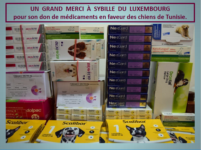 Dons du Luxembourg pour CCTNA - 2018 Merci_10