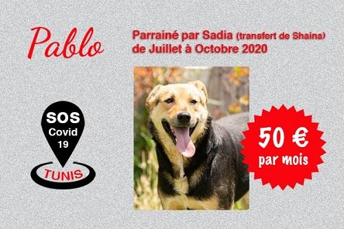 Pandémie COVID19 - Nos protégés bloqués à Tunis - Page 2 Pablo_19
