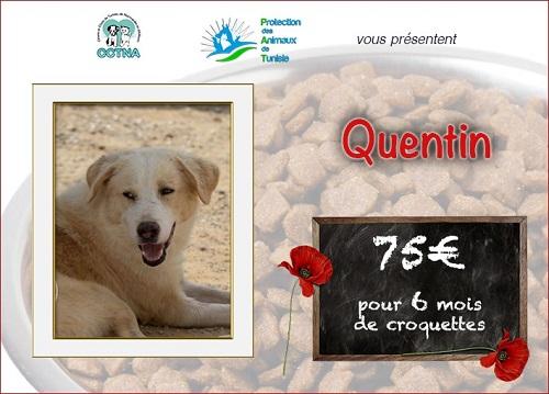 Collecte alimentaire pour les animaux du refuge PAT Quenti10