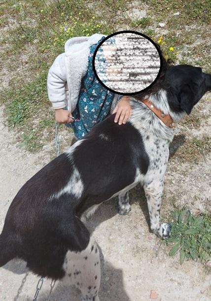 SANDRA, identifiée 788.269.100.015.---, en pension à Tunis Sandra18