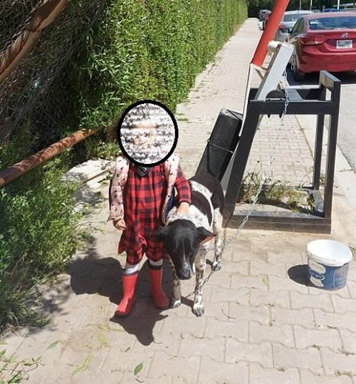 SANDRA, identifiée 788.269.100.015.---, en pension à Tunis Sandra19