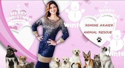 Aide pour stériliser 22 chiens du refuge de la PAT Yasmin12